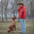 Clicker Dog Training – 4 Important Points